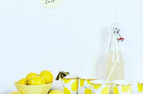Titelbild Hausgemachte Limonade – Rezeot Blog